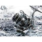 Daiwa Caldia Lt